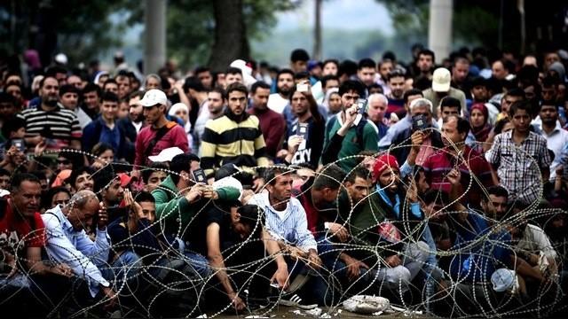 Права беженцев в России и других странах.